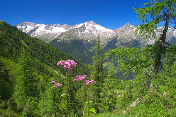 Ahrntal in Südtirol