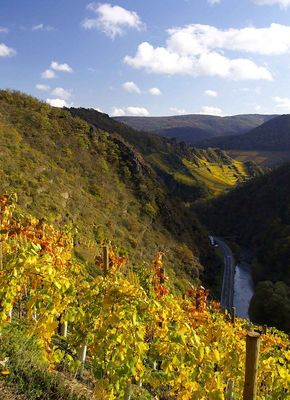 Ahrtal im Herbst 2005