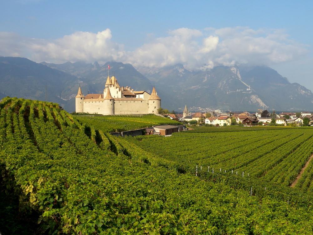 AIGLE: son château et ses vignes / su castillo y su viñedo / seine Burg und sein Weinberg..02
