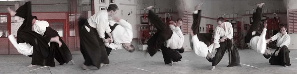 Aikido Techniken