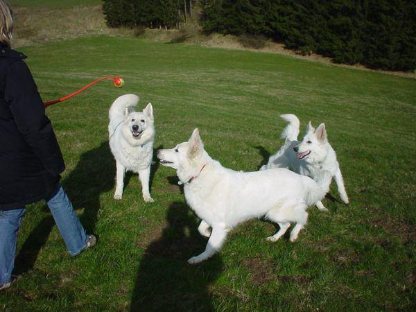 Aiko, Jamila & Chenoa
