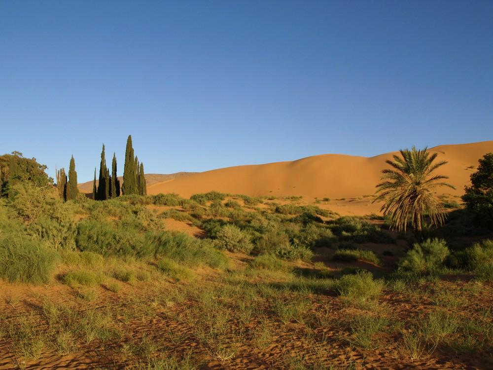 Ain Sefra SUD ALGERIA