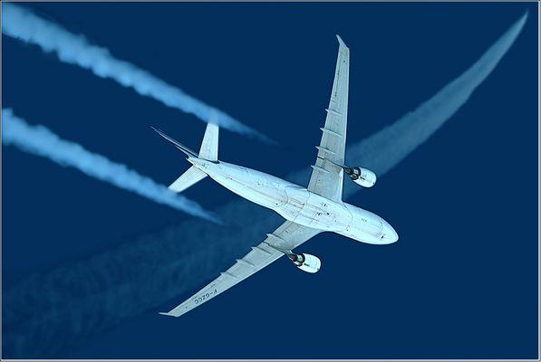 Air France Airbus A 330 (F-GZCC)