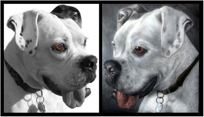 Airbrush-Portrait von Wotan