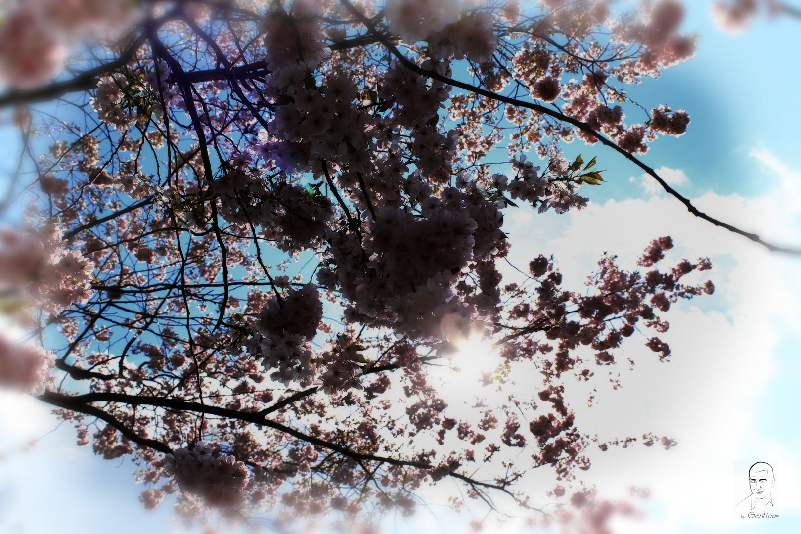Aire Primaveral
