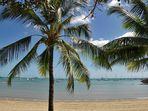 .. Airle Beach .. Queensland ..