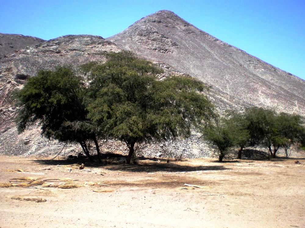 Al borde del desierto