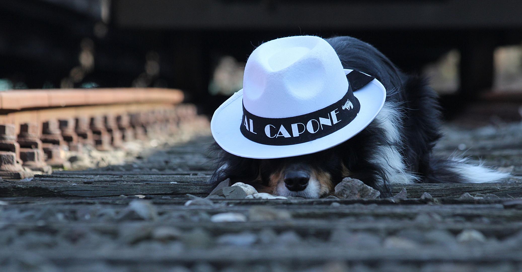 Al Capone II