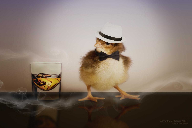 Al Chicko