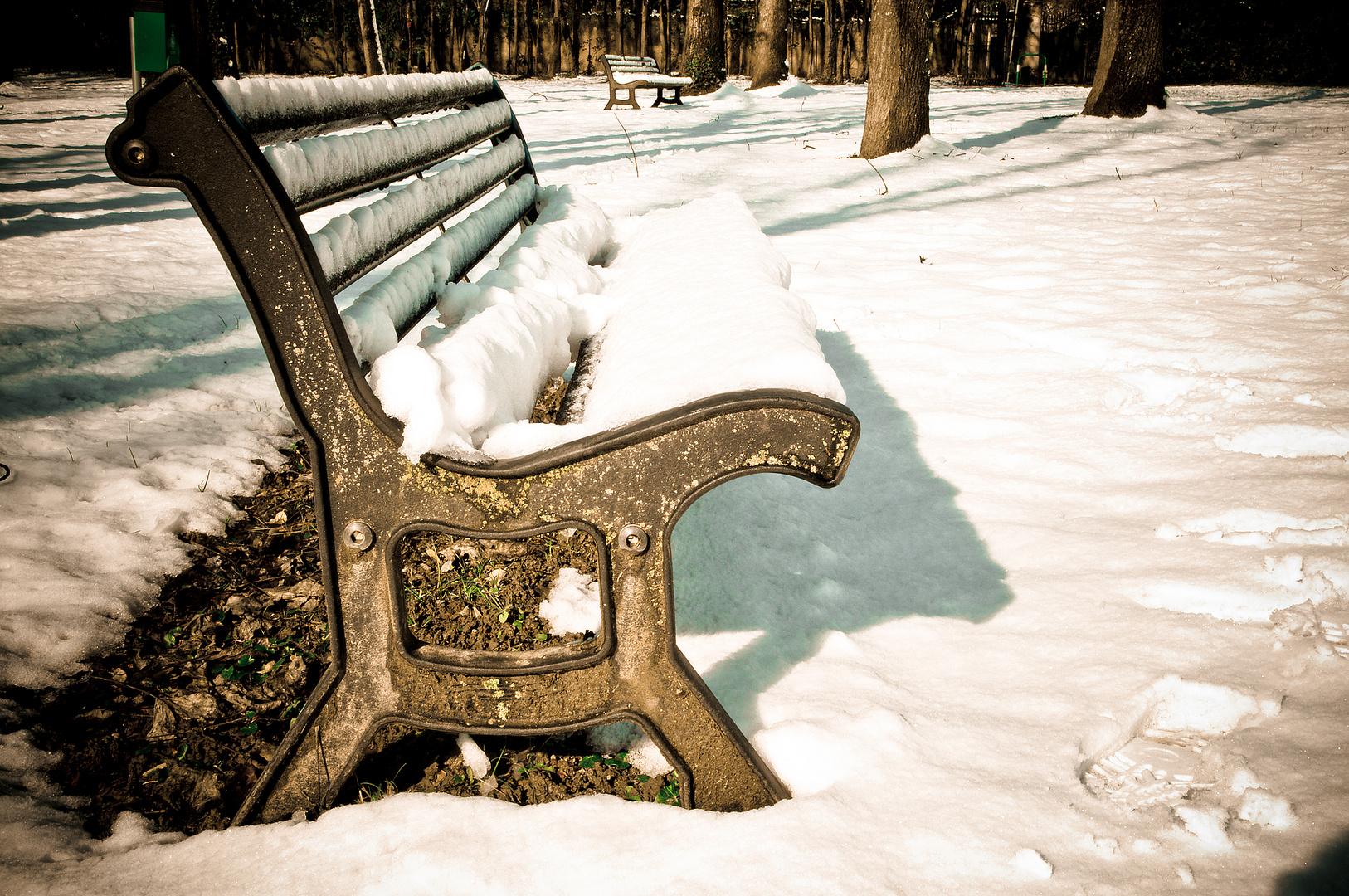 Al parco, d'inverno