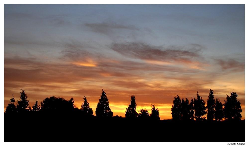 Al tramonto....gli alberi