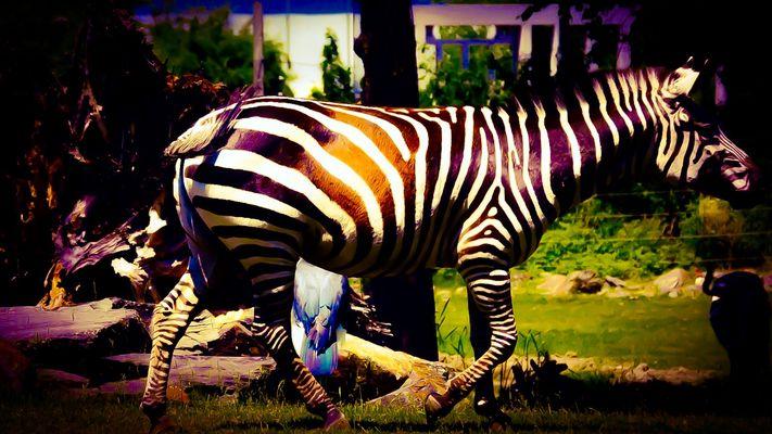 Alaka zoo