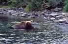 Alaska-Impressionen (44)
