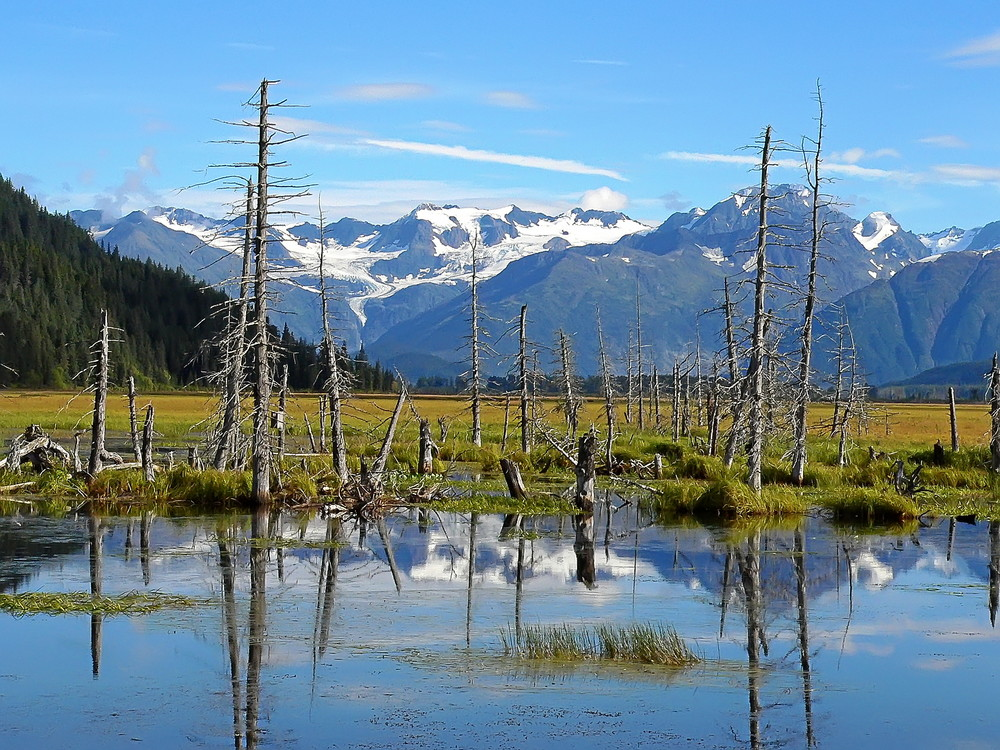 Alaska - Kenai Penninsula