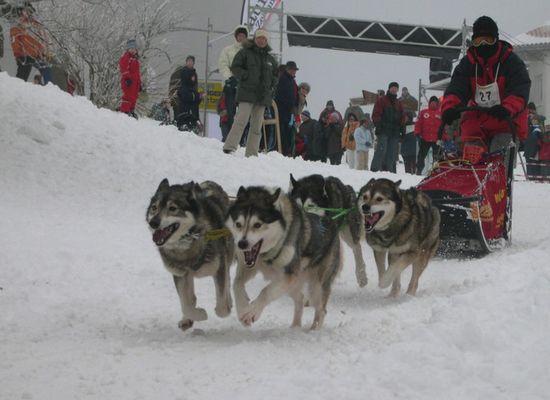 Alaska liegt mitten in Hessen