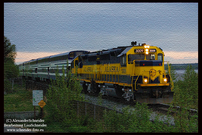 Alaska Railroad von Steward nach Anchorage