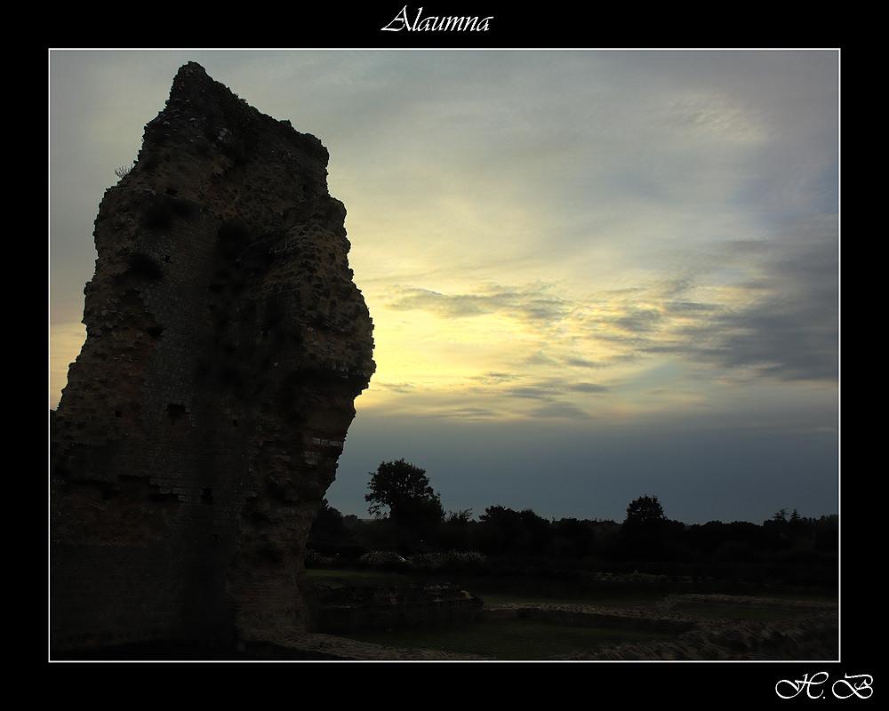 Alaumna