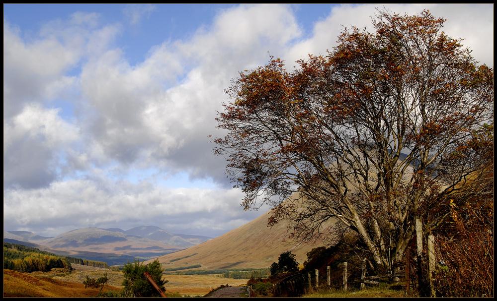 Alba #2   -   am West Highland Way