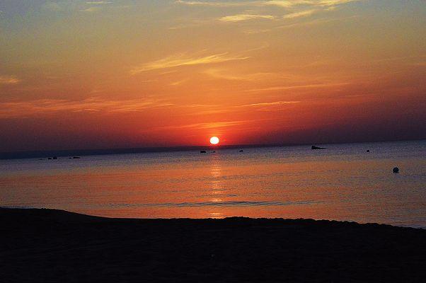 alba d'agosto in un candido cielo d'estate..