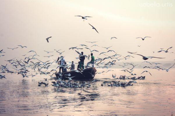 Alba sul Gange - Varanase