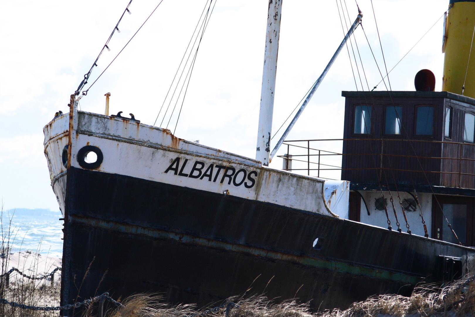 Albatros oder Titanic?