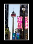Alberta 321 Calgary