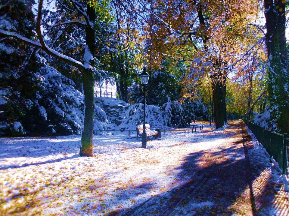 Albertpark Freiberg