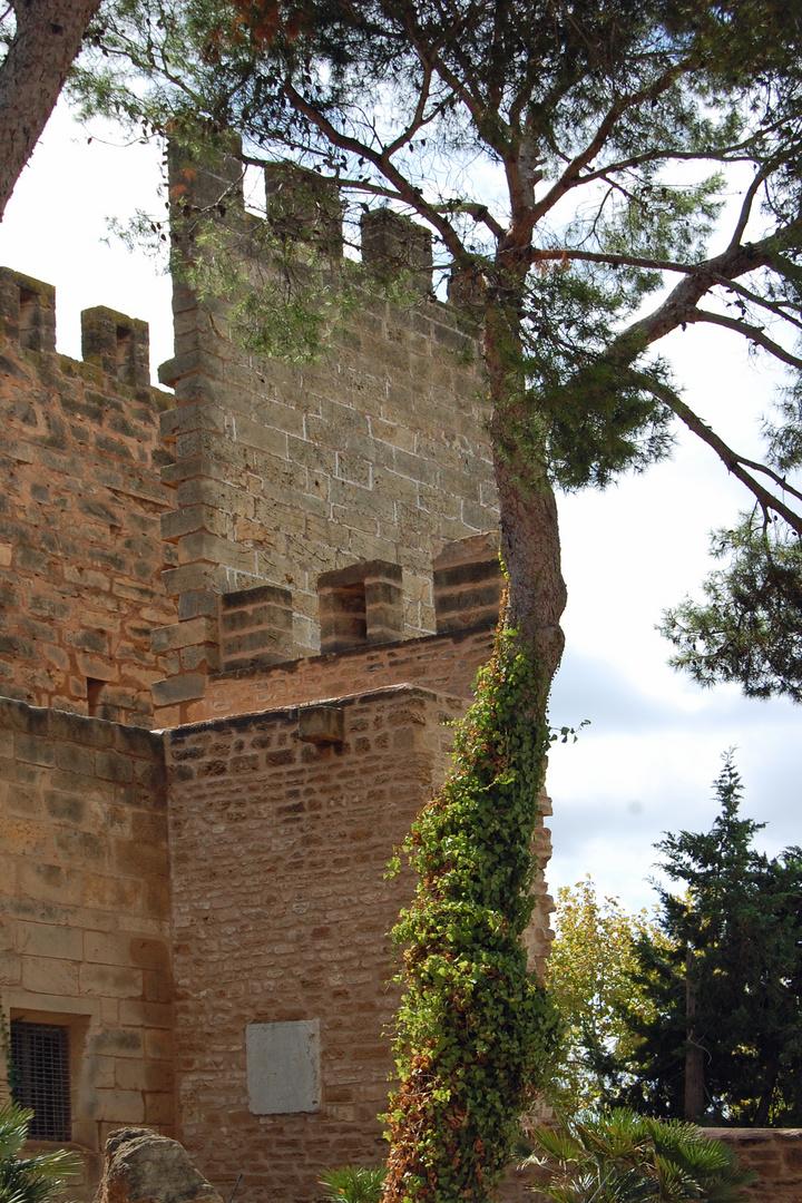 Alcudia - Altstadt - 4