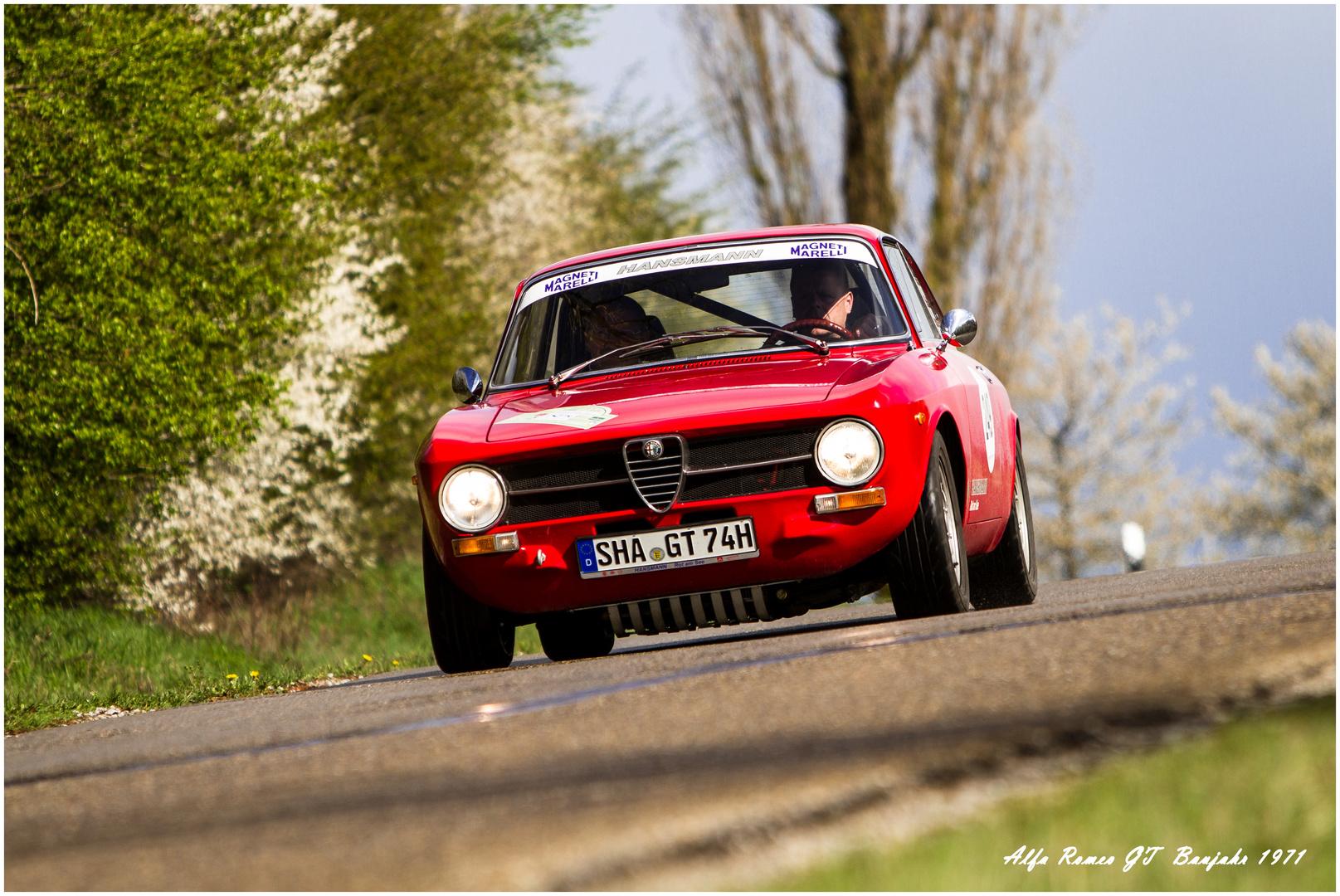 Alfa Romeo GT - Historic Rally