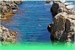 Alfonsina y el mar.