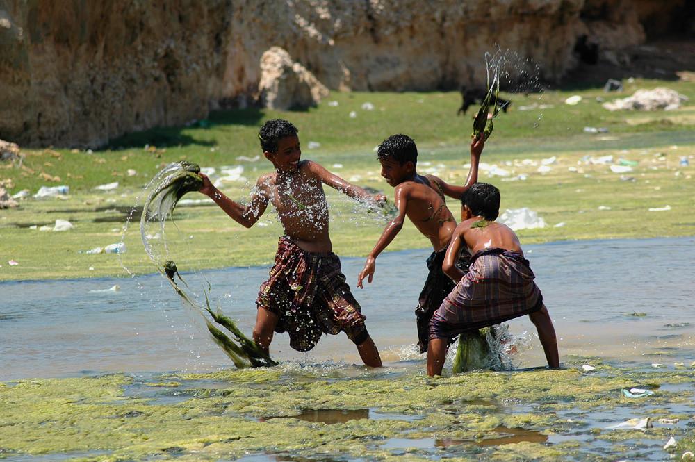 Algenschlacht auf Socotra