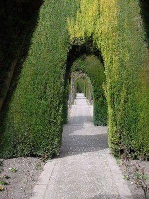 Alhambra - Gartenlandschaft
