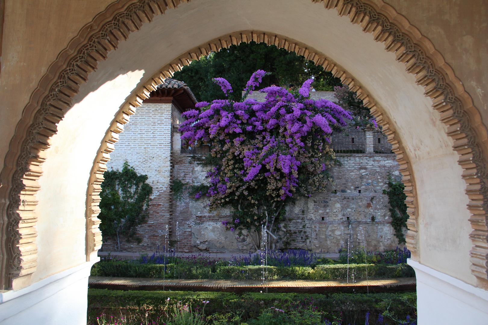 Alhambra, Granada, Blütenpracht im Palast