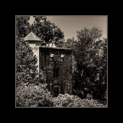 Alhambra XI