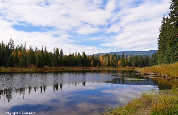 Alice Lake....