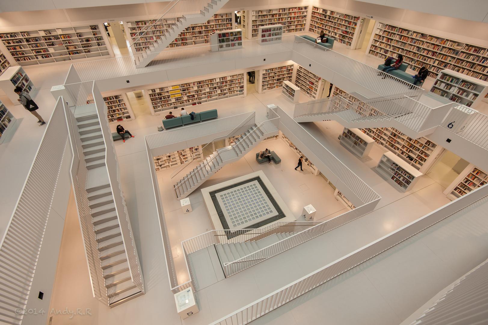 Alle Wege führen zum Buch / all ways lead to the book