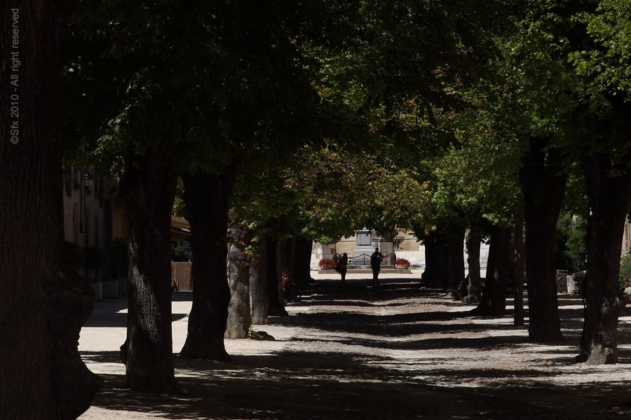 ...Allée principale de St-Antoine de l'Abbaye (Isère)...
