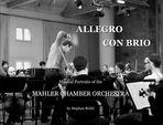 """""""Allegro con brio"""""""