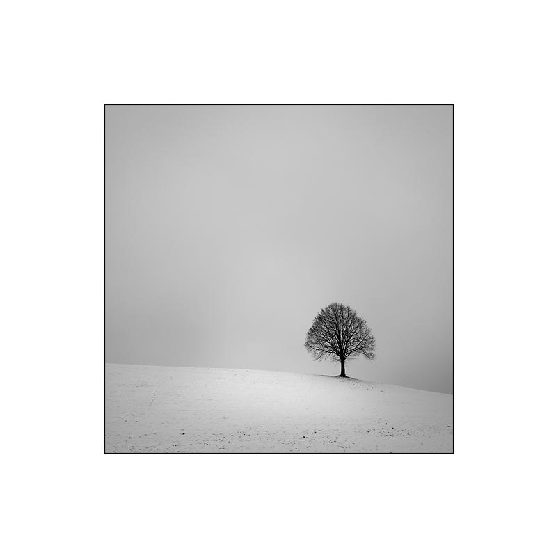 allein gegen den winter