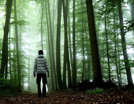 Allein im dunklen Wald