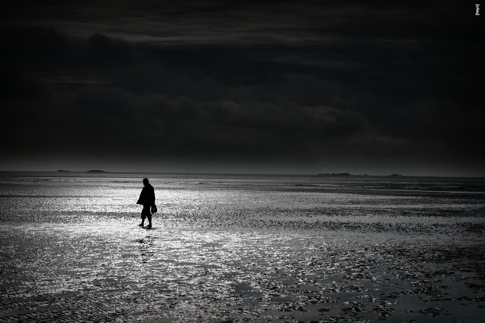 Allein im Wattenmeer