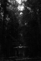 Alleine im Walde