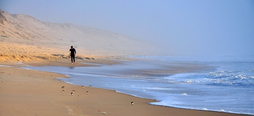 Alleine mit den Strandläufern