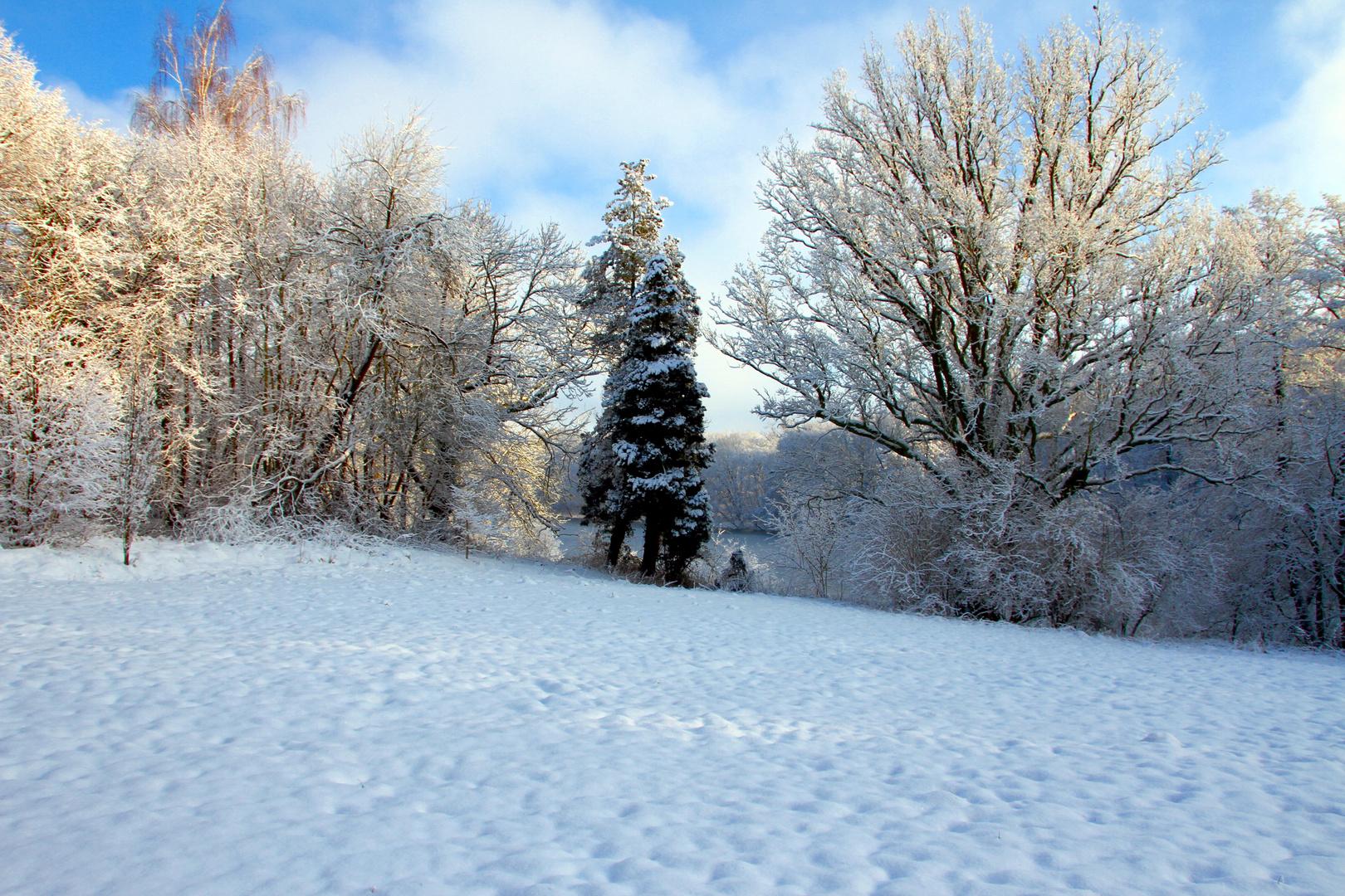 Allen einen schönen Wintertag.