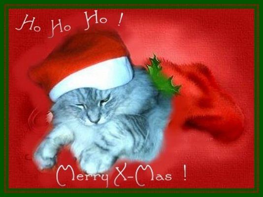 Allen fc-Fans kuschelige Weihnachten!