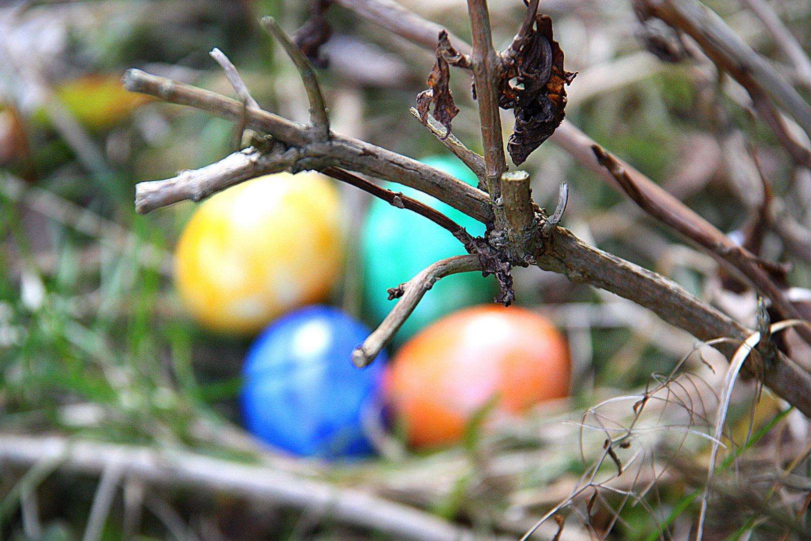 Allen wünsche ich ein frohes und hoffentlich wärmeres Osterfest .