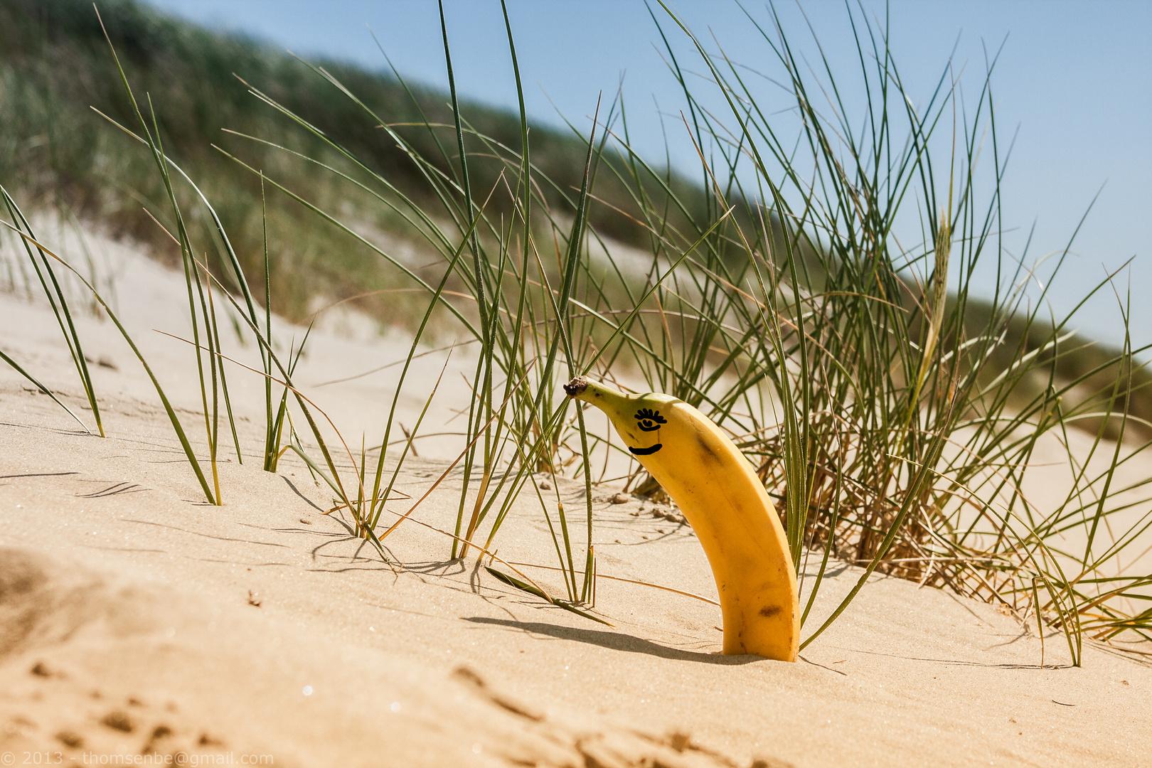 [alles Banane ]