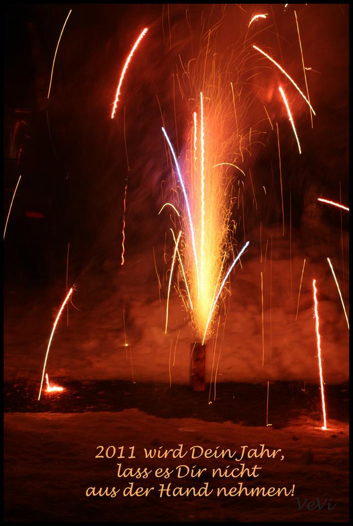 Alles Gute für 2011 !!!