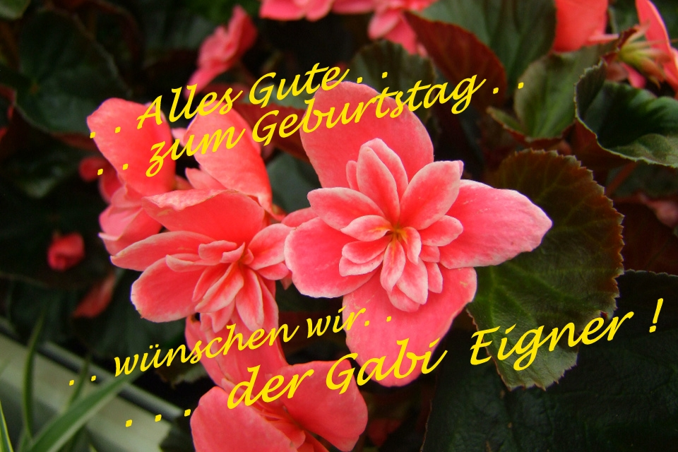 ". . ""Alles Gute Gabi Eigner !"". ."