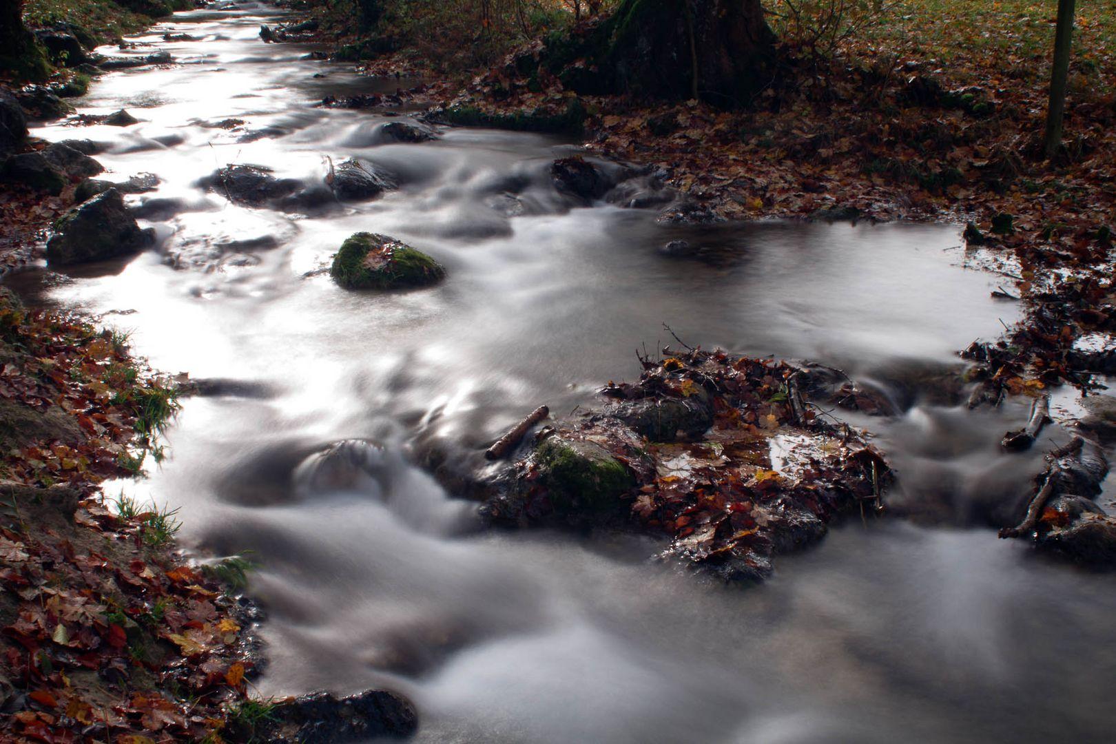 alles im Fluss I
